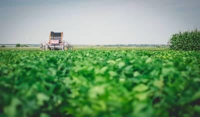 Башкирии могут компенсировать аграрную продукцию из других регионов из-за засухи