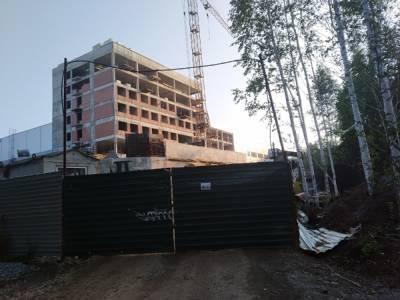Жители новых микрорайонов Челябинска просят Путина остановить застройку леса
