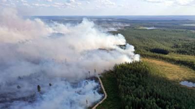 Ленобласть поможет Карелии в тушении лесных пожаров, отправив военные вертолеты