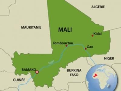 Посольство России рассказало, что напавшие на временного президента Мали задержаны