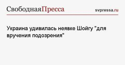Украина удивилась неявке Шойгу «для вручения подозрения»