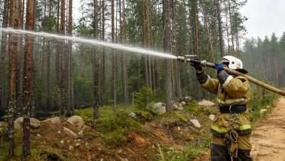 Во всей Карелии объявили режим ЧС из-за лесных пожаров