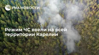 Минприроды Карелии: режим ЧС ввели на всей территории региона из-за лесных пожаров