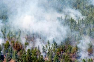 На всей территории Карелии в связи с лесными пожарами ввели режим ЧС до 31 июля включительно