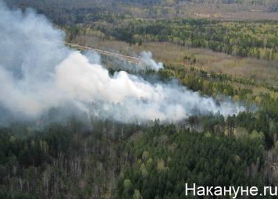 Режим ЧС ввели во всей Карелии из-за масштабных лесных пожаров