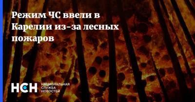 Режим ЧС ввели в Карелии из-за лесных пожаров