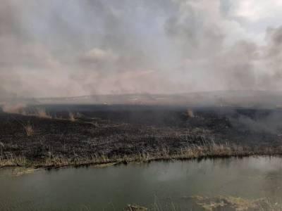 Глава Карелии ввел режим ЧС на территории всей республики из-за лесных пожаров