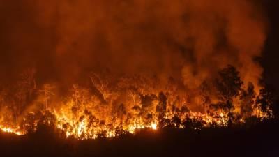 Дым от лесных пожаров дошел до Восточного побережья США