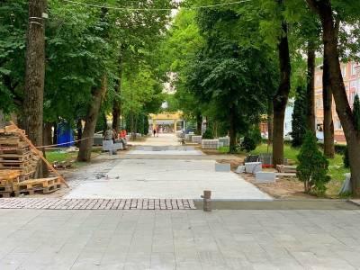 В центре Смоленска появится «световое дерево»