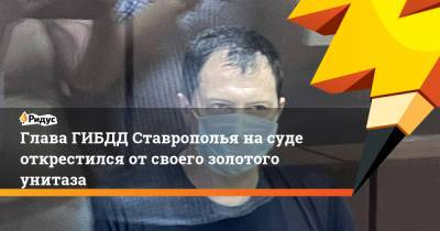 Глава ГИБДД Ставрополья на суде открестился от своего золотого унитаза