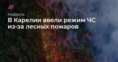 В Карелии ввели режим ЧС из-за лесных пожаров
