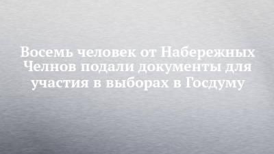 Восемь человек от Набережных Челнов подали документы для участия в выборах в Госдуму