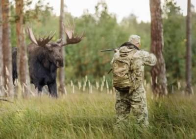 В Смоленской области утверждены объемы добычи охотников на год