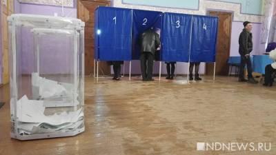 В Курганской области на «деревенские» выборы заявились почти две сотни человек