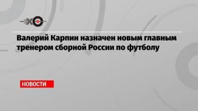 Валерий Карпин назначен новым главным тренером сборной России по футболу