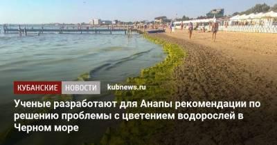 Ученые разработают для Анапы рекомендации по решению проблемы с цветением водорослей в Черном море