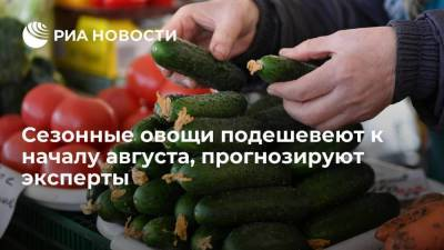 Сезонные овощи подешевеют к началу августа, прогнозируют эксперты
