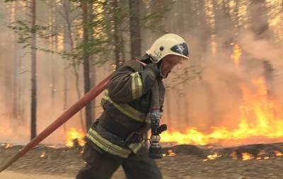 В России за сутки потушили более 100 тыс. га лесных пожаров