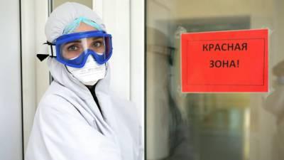 За сутки в России выявили 24 072 случая коронавируса