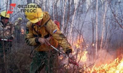 В Якутии за сутки потушили почти полсотни лесных пожаров