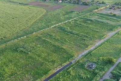 В Херсонской области обнаружили рекордную плантацию марихуаны