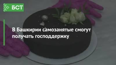 В Башкирии самозанятые смогут получать господдержку