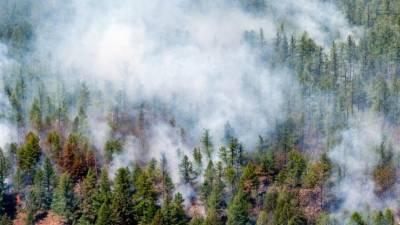 Жителей Сардинии массово эвакуируют: авиация не может остановить лесной пожар
