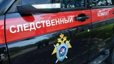 В Крыму проводят проверку по факту травмирования девочки на батуте