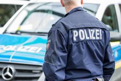 Обвиняемых в изнасиловании мигрантов отпустили под залог