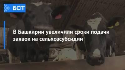 В Башкирии увеличили сроки подачи заявок на сельхозсубсидии