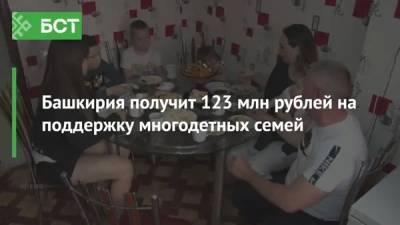 Башкирия получит 123 млн рублей на поддержку многодетных семей