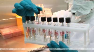 ВОЗ: смертность от коронавируса выросла в мире за неделю более чем на 20%