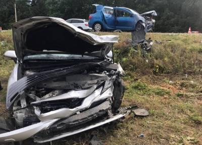 15-летняя девочка погибла в ДТП с автомобилем главы района под Воронежем