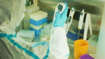За прошедшие сутки от коронавируса привились более 30 тыс. петербуржцев