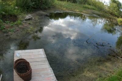 Петербургский Роспотребнадзор разрешил горожанам купаться в Суздальском озере