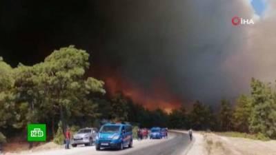 В турецком Мармарисе началась эвакуация отелей из-за лесных пожаров (видео)