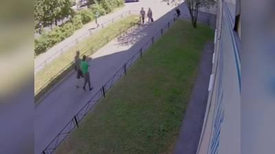 На улице Академика Байкова неадекват похитил собаку