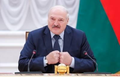 Власти Литвы обвинили в наплыве мигрантов Александра Лукашенко