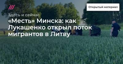 «Месть» Минска: как Лукашенко открыл поток мигрантов в Литву