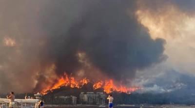 Лесные пожары в Турции: пострадали 183 человека, еще 4 погибли