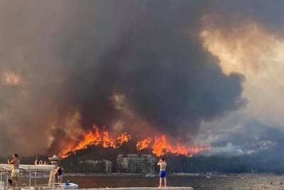 Туристка из Украины рассказала о масштабных пожарах в Турции и показала жуткие кадры