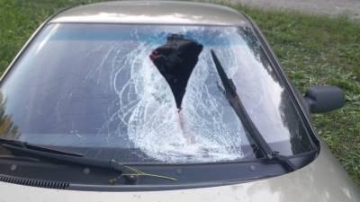 Отлетевшая от грузовика деталь убила водителя встречного автомобиля (ФОТО)