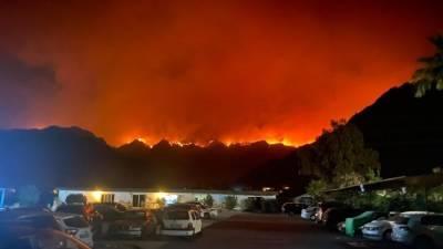 Путин подтвердил намерение РФ и дальше помогать Турции в тушении лесных пожаров