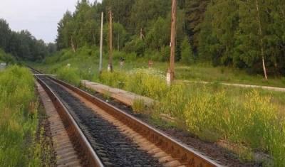 """Поезд """"Адлер - Москва"""" столкнулся с цементовозом в Калужской области: есть жертвы"""