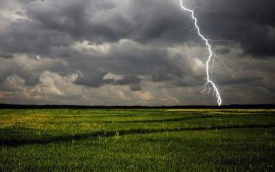 В Смоленской области август начнется с грозы и дождей