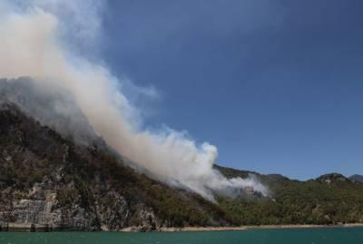 В Турции локализованы 88 из 98 лестных пожаров