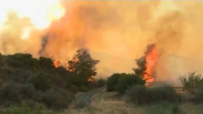 """Новости на """"России 24"""". Страшные лесные пожары на Кипре: 4 человека погибли, жителей эвакуируют"""