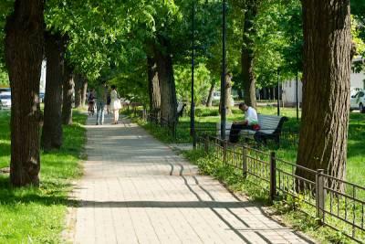 На Васильевском острове расширят площадь зеленых насаждений