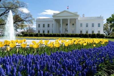 Белый дом сообщил о проведении переговоров США и России по кибербезопасности