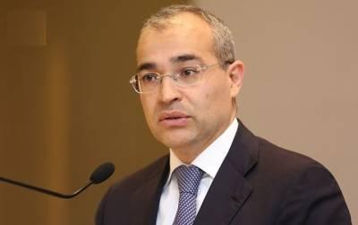 С начала года бизнесу в Азербайджане выданы льготные кредиты почти на 25 млн манатов - министр